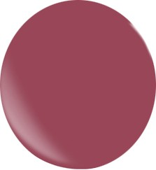 Gel couleur N095 / 22 ml