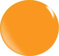 Couleur Poudre Acrylique N102 / 56 gr.