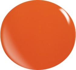 Gel couleur N040 / 22 ml