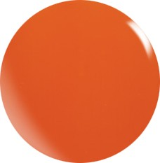 Gel couleur N073 / 22 ml