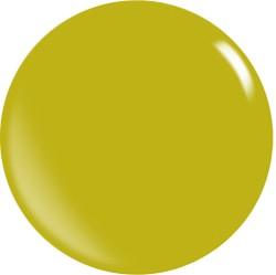 Gel couleur N118 / 22 ml