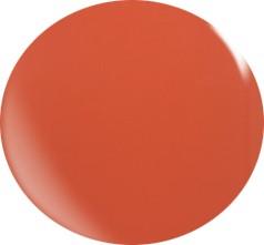 Gel couleur N031 / 22 ml